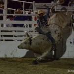 13-Oakley-Utah-Rodeo